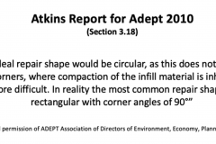 Adept-By-Atkins-Report-2010-